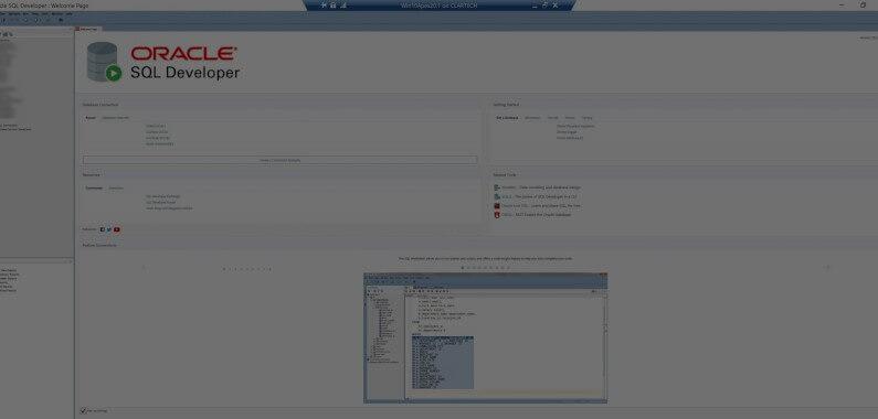 Cómo aumentar el tamaño de la GUI-fuente en Oracle SQL Developer