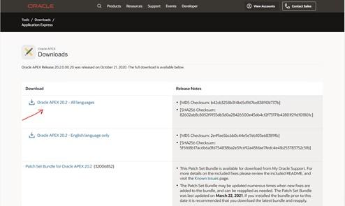 Actualizar APEX 20.1 a Apex 20.2 en una máquina virtual de Hyper-V